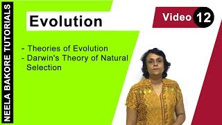 evolution-theories-of-evolution-darwin-39-s-theory-of-natural-selection