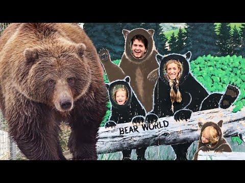 BEAR ENCOUNTER AT BEAR WORLD! (YELLOWSTONE)