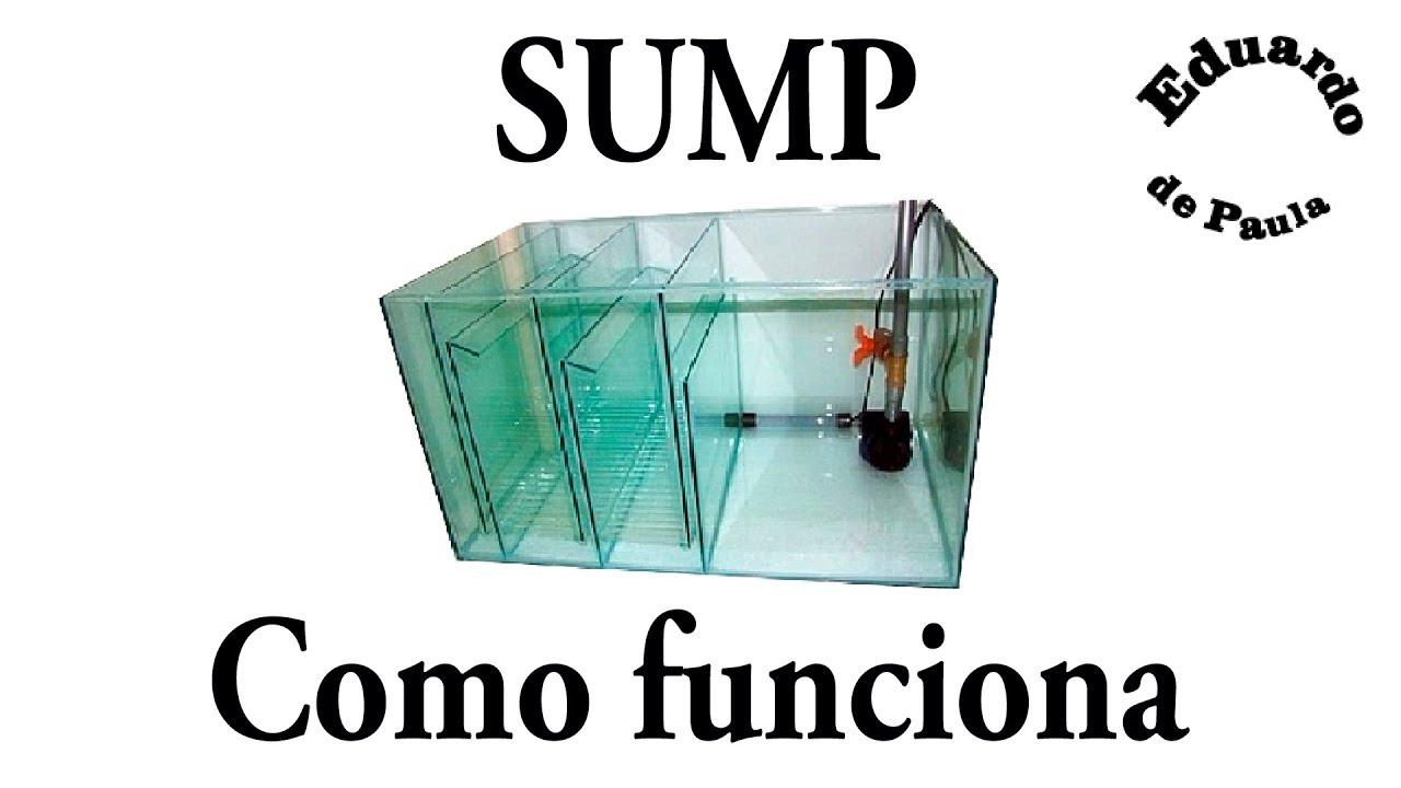 Como funciona o filtro Sump