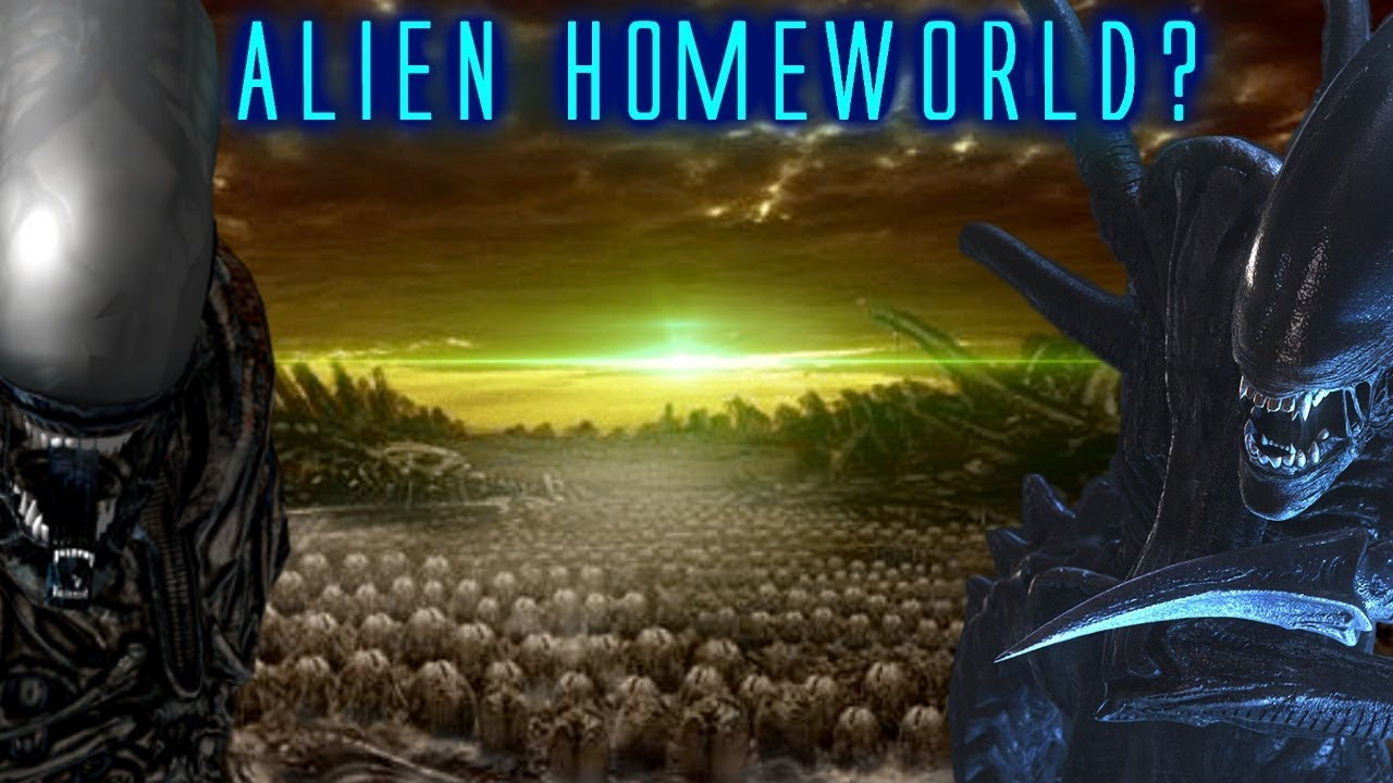 Xenomorph Prime Explained / Can the Alien Homeworld Still Exist in on yoda's home planet, krypton superman home planet, superman's home planet, chewbacca's home planet, transformers home planet, luke skywalker's home planet, predator home planet, alien home planet,
