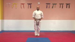 Short Form 1, American Kenpo Kata (White Belt)