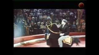 Фильм - История цирка глазами клоуна