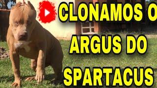 CLONAMOS O PIT MONSTER ARGUS DO SPARTACUS