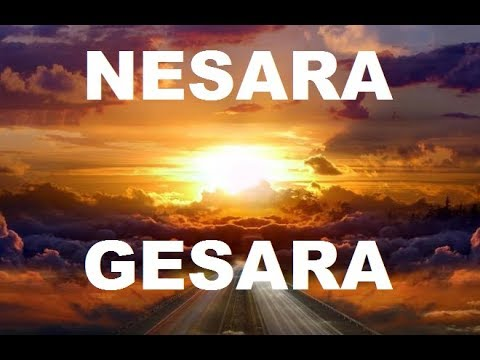 The NESARA GESARA letter: Everything will change (Useful guidelines)