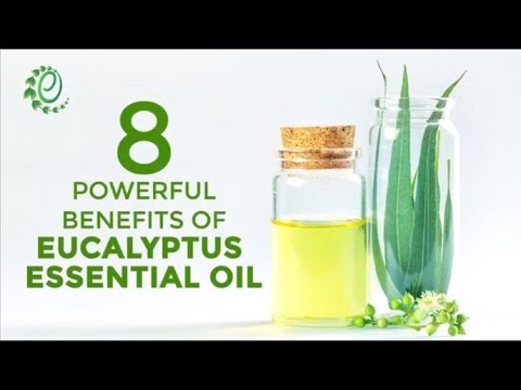 8-powerful-benefits-of-eucalyptus-essential-oil-|-organic-facts
