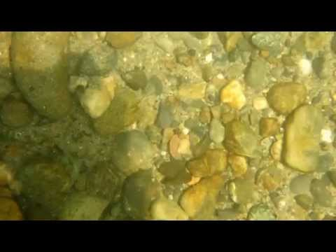 Water test of Olympus TG-830 :(
