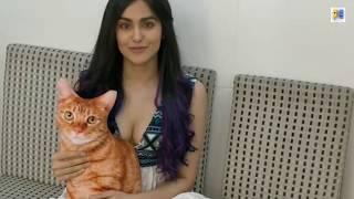 Adah Sharma looks Hot in low neck dress | 2019
