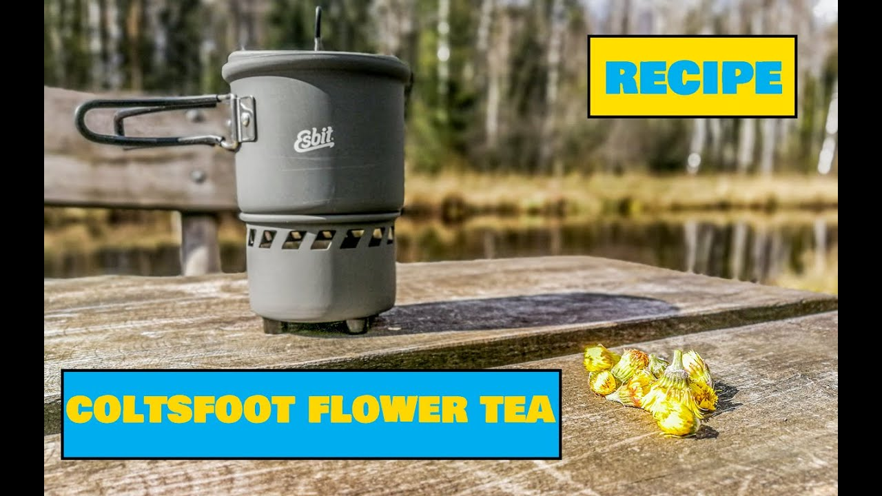 How to Make Tea From Coltsfoot Flowers / Paiselehe õie tee - Easy Outdoors Cooking