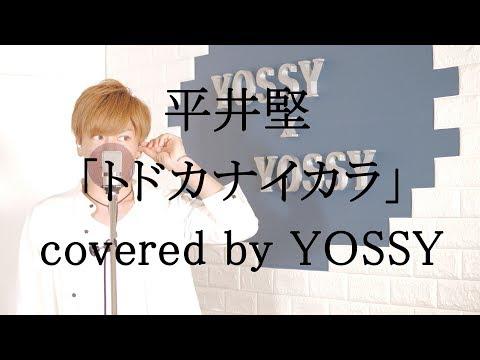 平井堅 / トドカナイカラ (映画『50回目のファーストキス』主題歌) covered by YOSSY