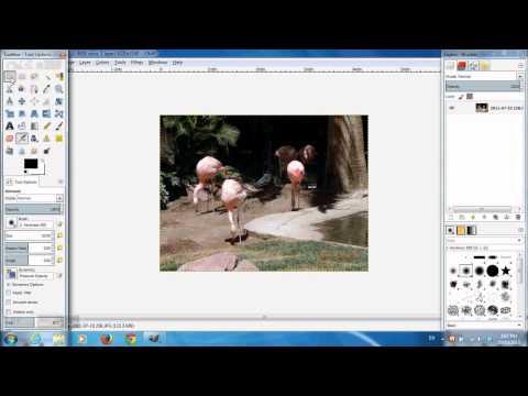 Gena PhotoStamper 216 установка даты снимка из EXIF на