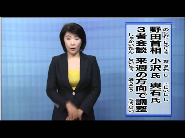 NHK手話ニュース | ぶどうの木 ...