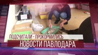 150 ТЫСЯЧ ТЕНГЕ ЗА СБОР МАКУЛАТУРЫ(А сейчас новостями Павлодарской области поделится Даурен Хаиргельдин. http://www.1tv.kz/ru/news/video22022016/novosti_pervye7., 2016-02-22T11:30:08.000Z)