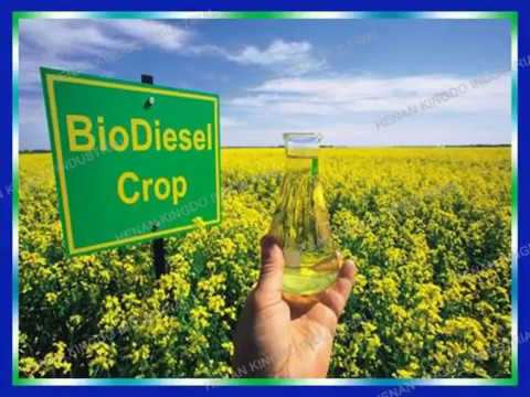Jatropha Oil Bio-diesel Project