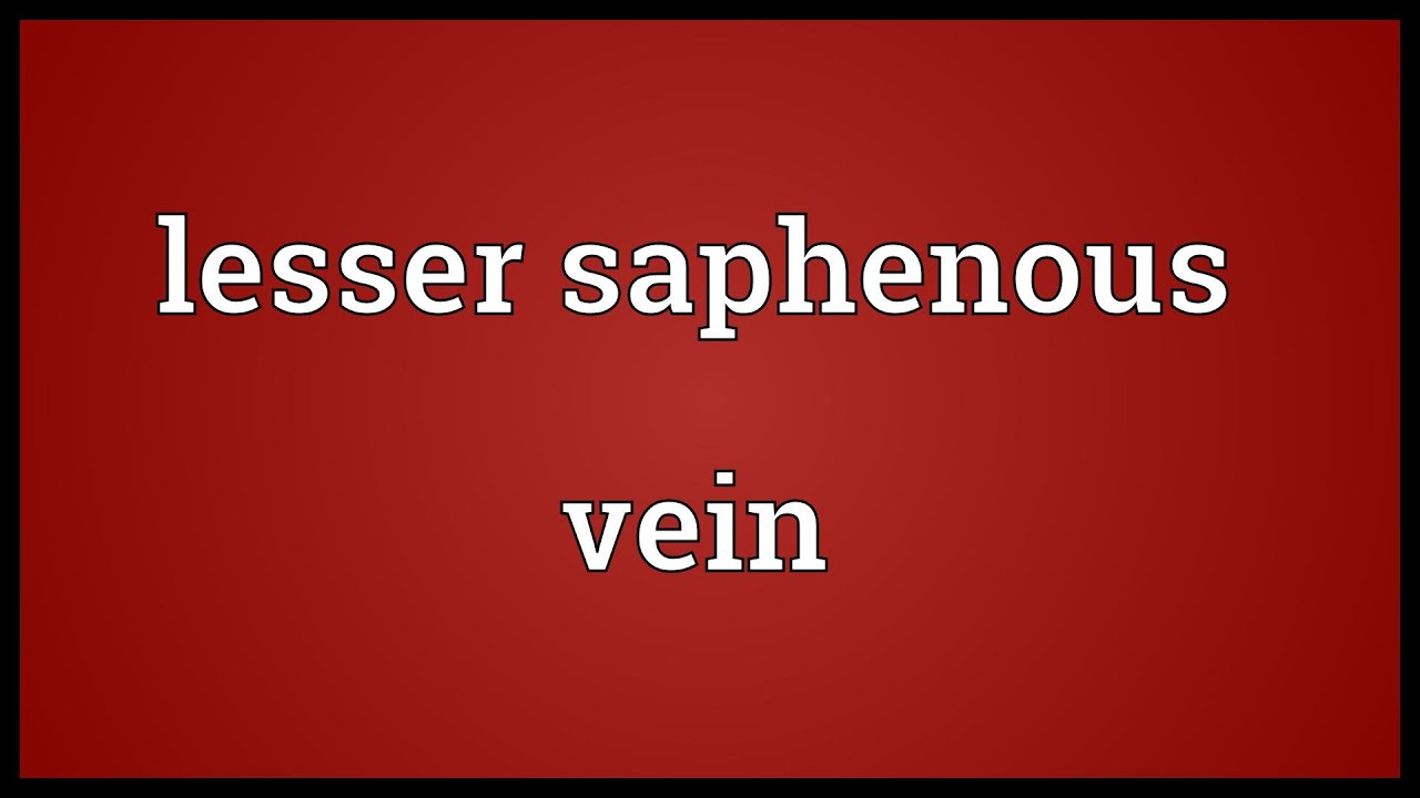 Lesser Saphenous Vein Meaning Youtube