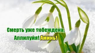 Иисус Христос воскрес!  гр  Снежинка