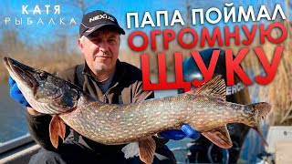 ПАПА ПОЙМАЛ ТРОФЕЙ ЩУКА 7 КГ Рыбалка на щуку на Днепре Ловля щуки на воблер