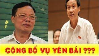 NÓNG: Chốt thời gian công bố kết quả thanh tra vụ biệt phủ Yên bái - Tin Tube