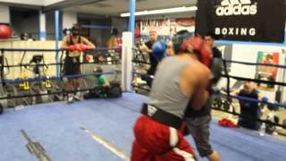 Hands of Stone Boxing Club Bernie