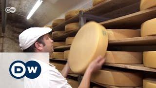 آلبما تصنع الآلات لصناعة الجبن   صنع في ألمانيا