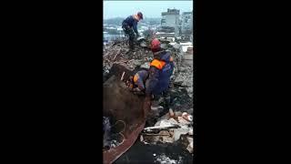 Работа спасателей в городе Шахты
