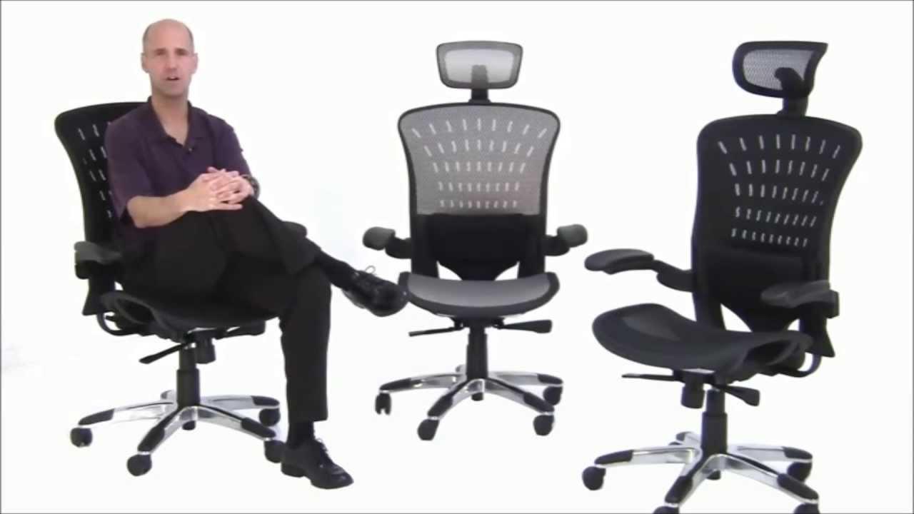 ErgoFlex Ergonomic Mesh Office Chair - Free Shipping ...