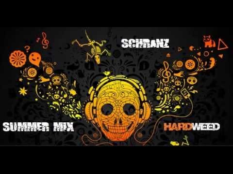 Schranz Summer mix (I´ will kill you) 2014