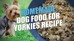 Yorkie home the cooking pdf for healthy homemade dog food for yorkies recipe forumfinder Image collections