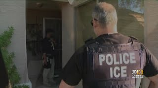 ICE Immigration Efforts