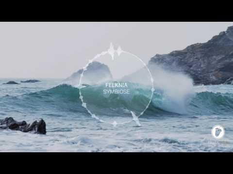 [Orchestral/DnB] Felknia - Symbiose