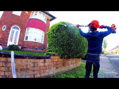 satisfying hedge trimming