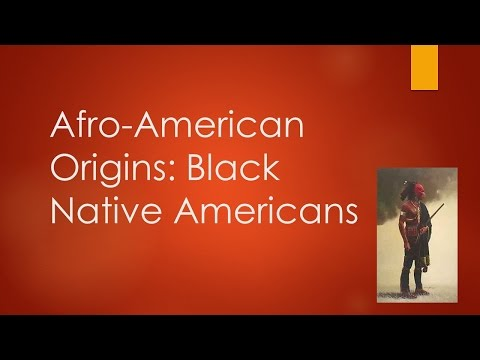 Afro-American Origins:  Black Native Americans