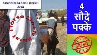 ध्यान से करैं मोलभाव सारंगखेडा घोडा बाज़ार में Horses Sold Out : Sarangkheda Horse Market 2018