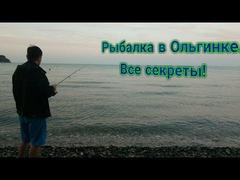 рыбалка на море в ольгинке