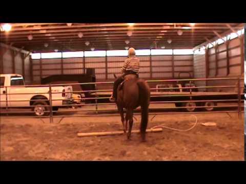 Big Ed, Sorrel Quarter Horse Gelding for sale