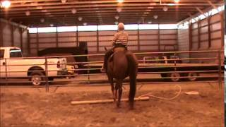 Big Ed, Sorrel Quarter Horse Gelding for sale