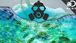 How Global Warming Is Awakening Deadly Diseases