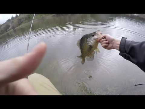 Slab Crappie On The Fly