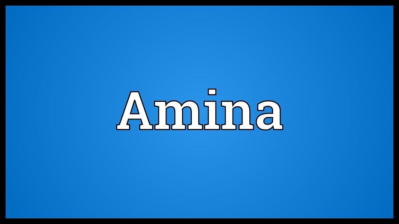 Amina Meaning