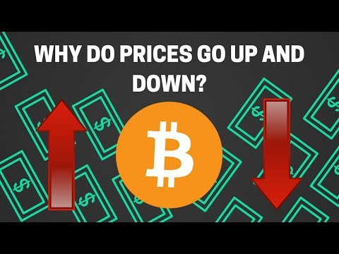 Why The Value Of Digital Currencies Rise And Fall