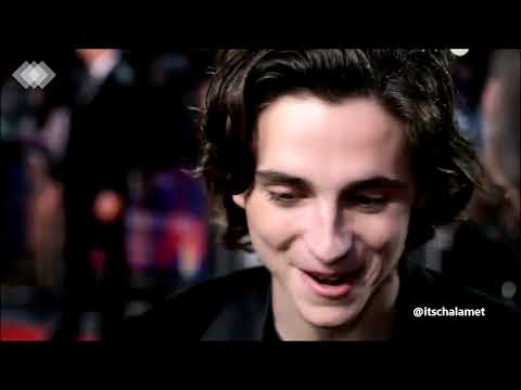Timothée Chalamet || I think I wanna marry you