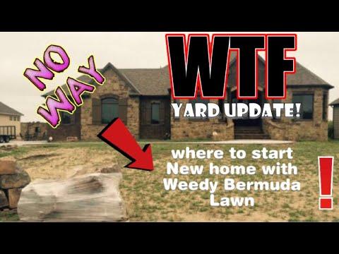 Weedy Bermuda Lawn What the F@$k yard update!!