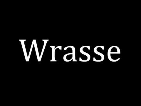 How To Pronounce Wrasse