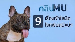 9 เรื่องเข้าใจผิดโรคพิษสุนัขบ้า : คลิป MU [by Mahidol]