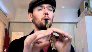 Scarborough Fair - Tin Whistle by Daniel Edwards ティンホイッスル演奏