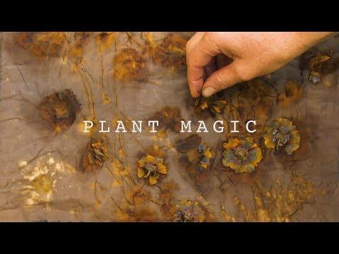 Plant Magic – Eco-Printing with Jennifer Johnson