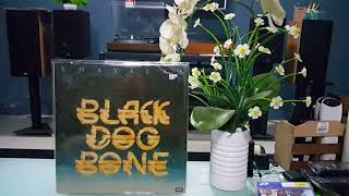 Black Dog Bone - Khayalan