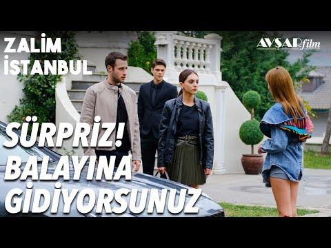 Cemre ve Cenk'e Balayı Sürprizi💕 | Zalim İstanbul 21. Bölüm