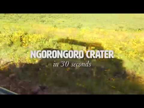 The Ngorongoro Crater in 30 Seconds  - TANZANIA