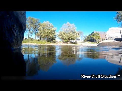 Elgin Fox River- Underwater Edition