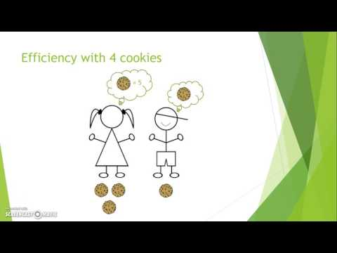 Equity vs. Economic Efficiency